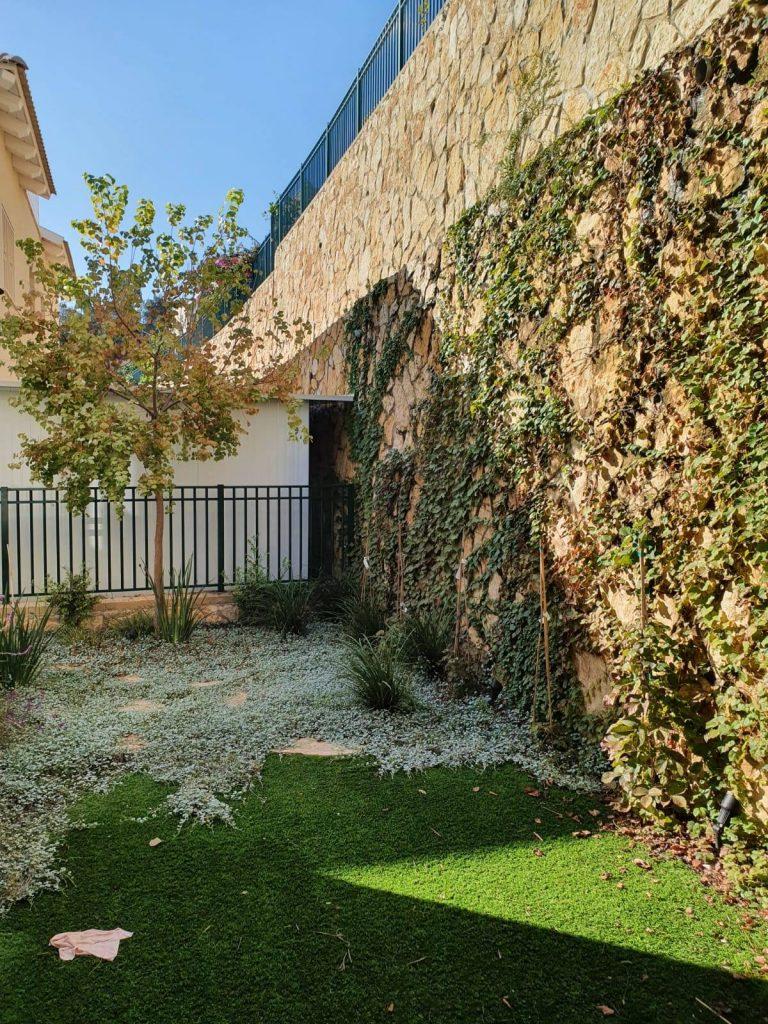 """עיצוב גינה פרטית ע""""י חברת שדות - צמח מטפס על קיר"""