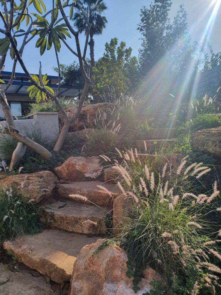כניסה לגינה רחבה וגדולה בבית פרטי בקיסריה